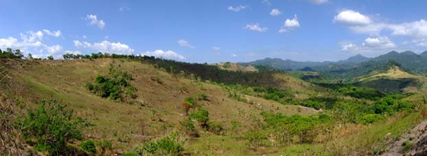"""GOING GREEN. Part of the 50-hectare land in Sitio Kanawan, Morong, Bataan where 10,000 seedlings of hardwood and fast growing fruit trees will be planted as part of PTT's """"Gas Up for a Tree"""" project."""